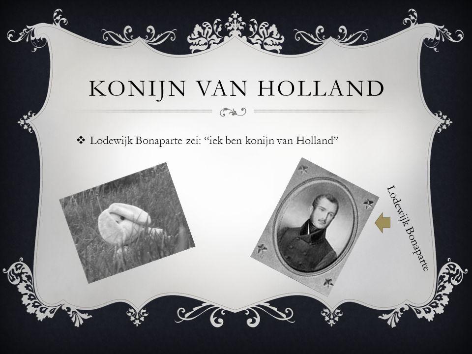 Konijn van Holland Lodewijk Bonaparte zei: iek ben konijn van Holland Lodewijk Bonaparte