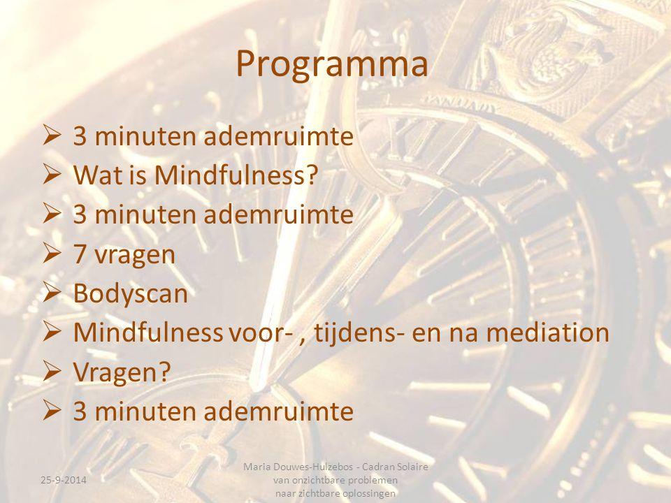 Programma 3 minuten ademruimte Wat is Mindfulness 7 vragen Bodyscan