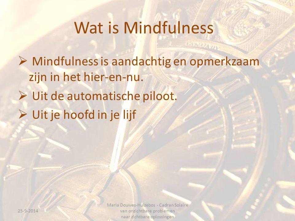 Wat is Mindfulness Mindfulness is aandachtig en opmerkzaam zijn in het hier-en-nu. Uit de automatische piloot.