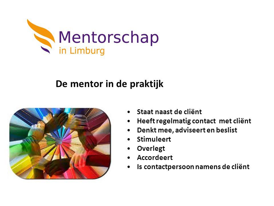 De mentor in de praktijk