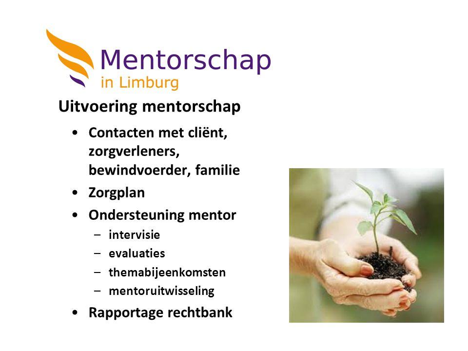 Uitvoering mentorschap
