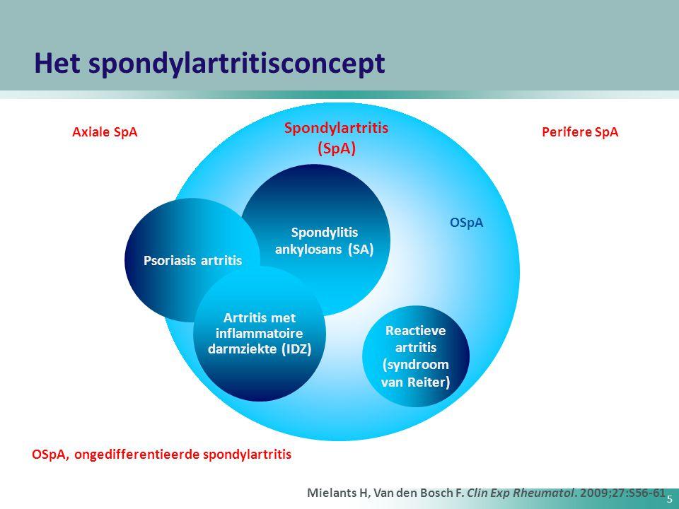 Het spondylartritisconcept