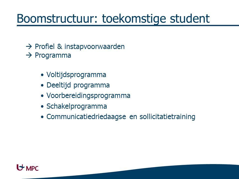 Boomstructuur: toekomstige student 2