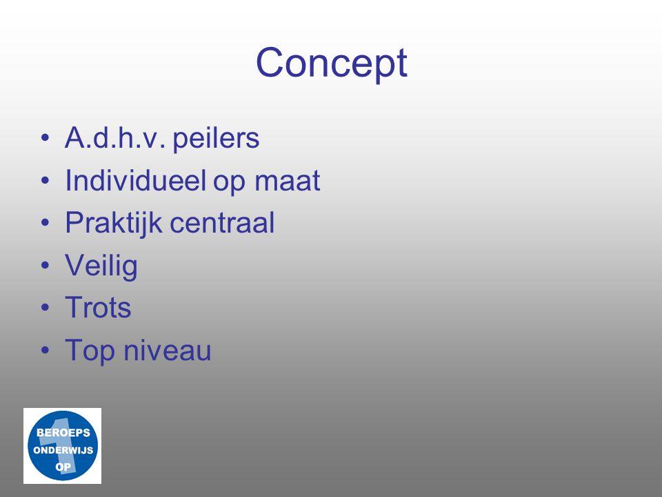 Concept A.d.h.v. peilers Individueel op maat Praktijk centraal Veilig