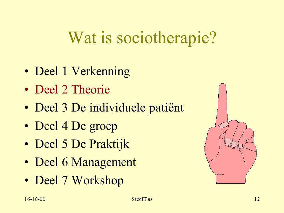 Wat is sociotherapie Deel 1 Verkenning Deel 2 Theorie