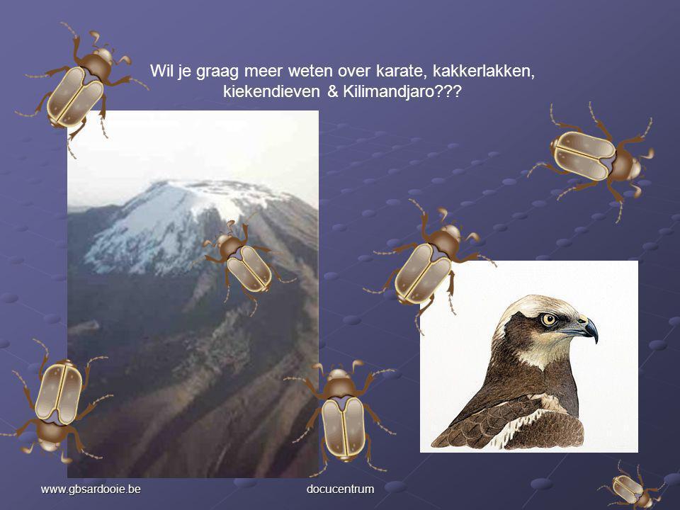 Wil je graag meer weten over karate, kakkerlakken, kiekendieven & Kilimandjaro