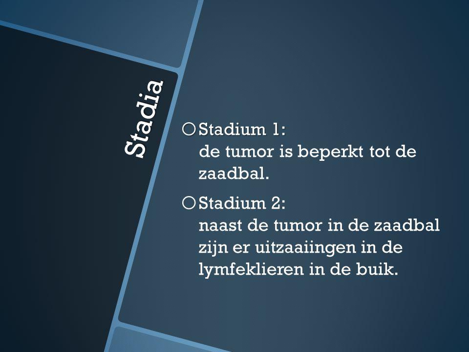 Stadia Stadium 1: de tumor is beperkt tot de zaadbal.