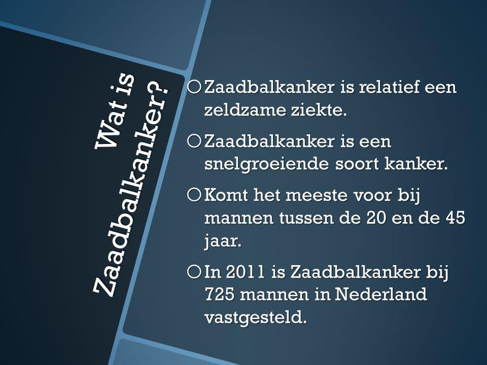 Wat is Zaadbalkanker Zaadbalkanker is relatief een zeldzame ziekte.