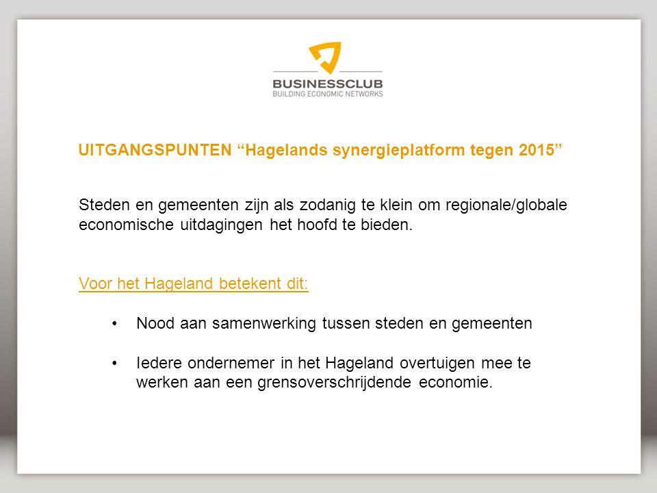 UITGANGSPUNTEN Hagelands synergieplatform tegen 2015