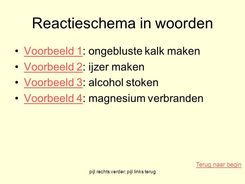 Reactieschema in woorden