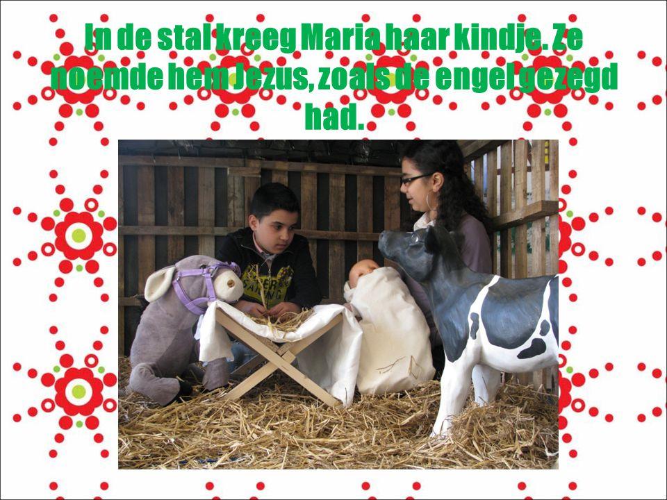 In de stal kreeg Maria haar kindje
