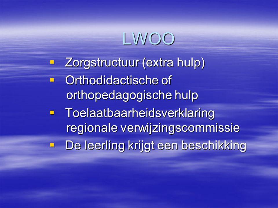 LWOO Zorgstructuur (extra hulp)