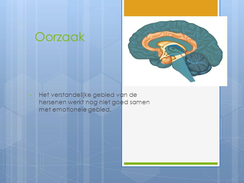 Oorzaak Het verstandelijke gebied van de hersenen werkt nog niet goed samen met emotionele gebied.