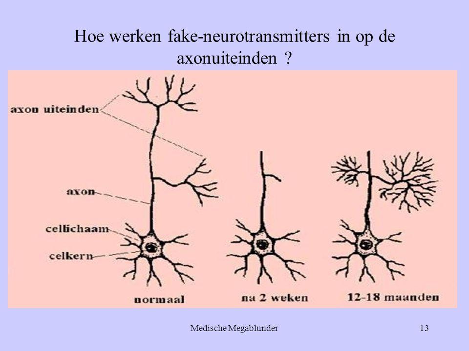 Hoe werken fake-neurotransmitters in op de axonuiteinden