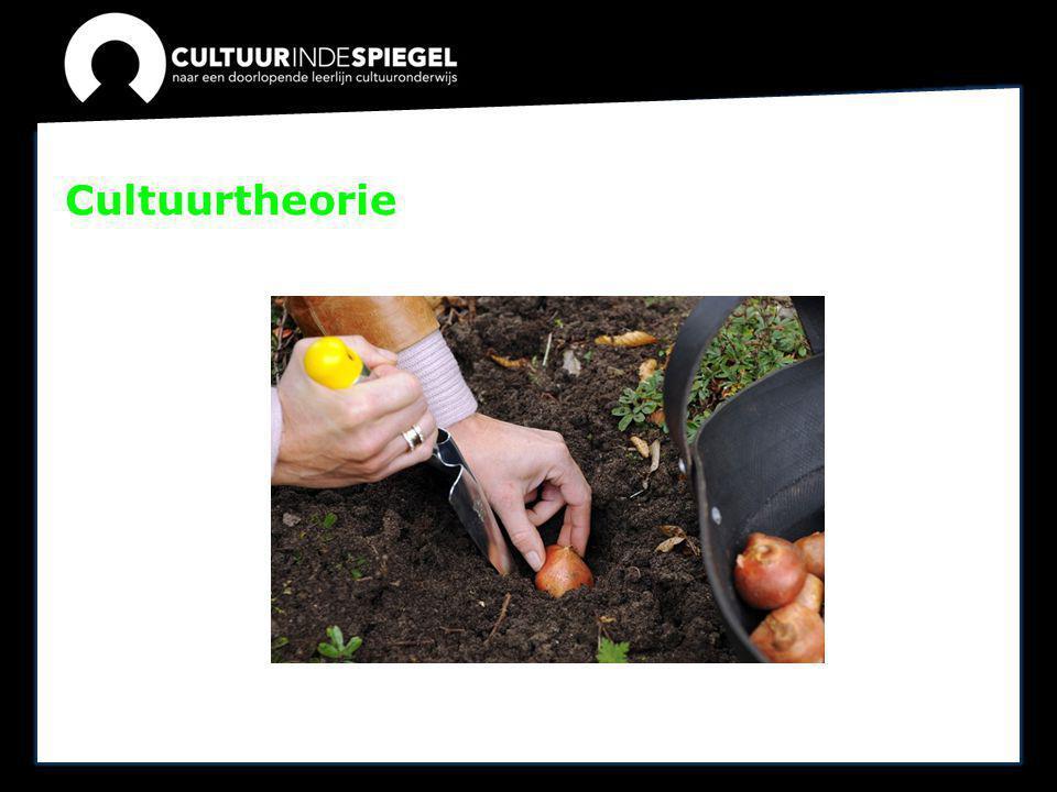 Cultuurtheorie