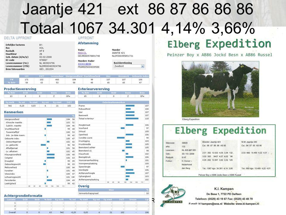 Jaantje 421 ext 86 87 86 86 86 Totaal 1067 34.301 4,14% 3,66% Hilbrand Korver WWW.FOKSTIEREN.COM