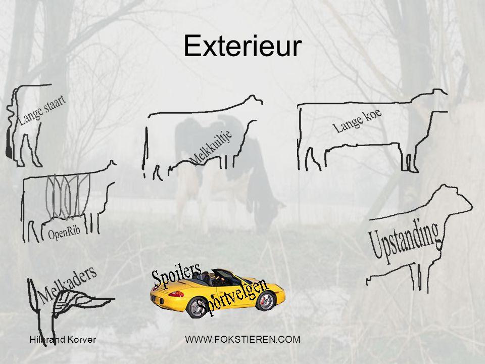 Exterieur Hilbrand Korver WWW.FOKSTIEREN.COM