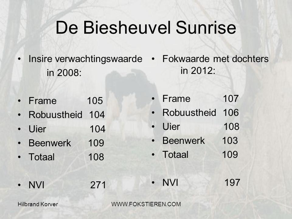 De Biesheuvel Sunrise Insire verwachtingswaarde in 2008: Frame 105