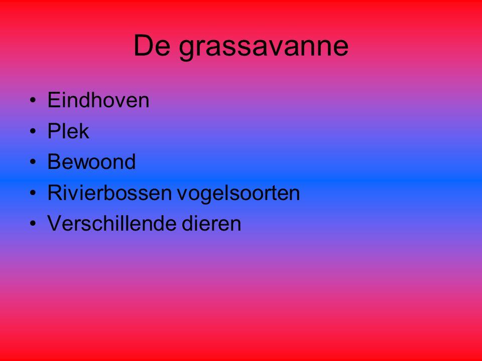De grassavanne Eindhoven Plek Bewoond Rivierbossen vogelsoorten