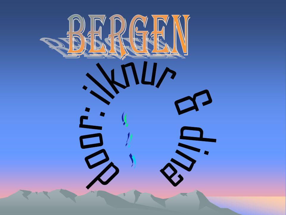 Bergen door: ilknur & dina !!!