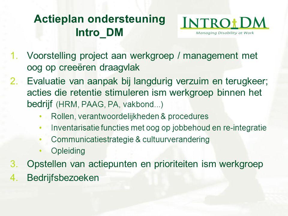 Actieplan ondersteuning Intro_DM