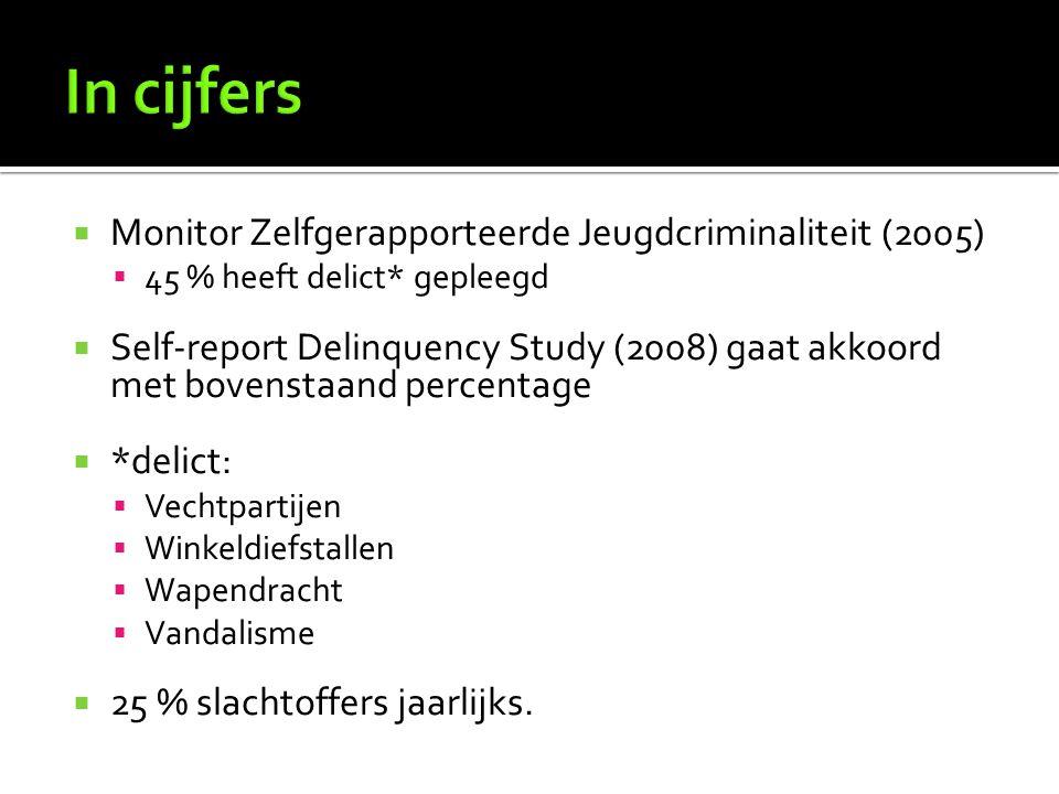 In cijfers Monitor Zelfgerapporteerde Jeugdcriminaliteit (2005)