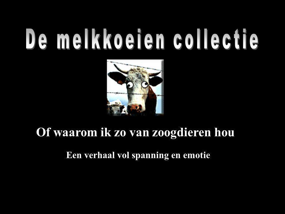 De melkkoeien collectie