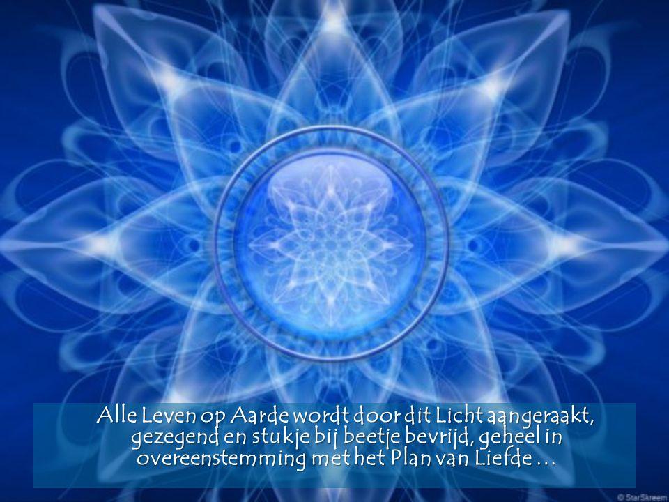 Alle Leven op Aarde wordt door dit Licht aangeraakt, gezegend en stukje bij beetje bevrijd, geheel in overeenstemming met het Plan van Liefde …