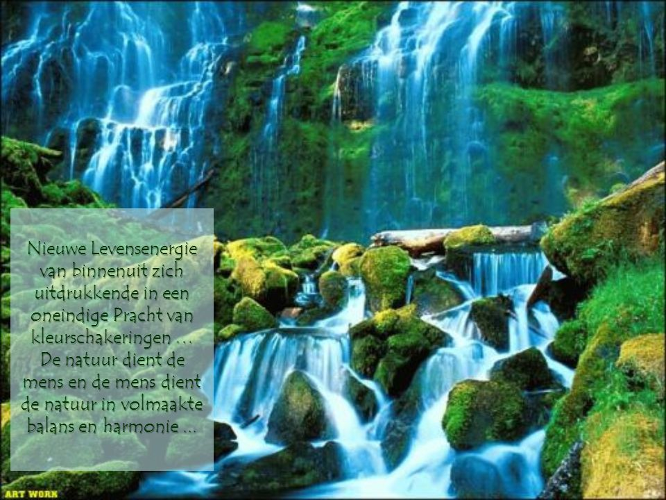 Nieuwe Levensenergie van binnenuit zich uitdrukkende in een oneindige Pracht van kleurschakeringen … De natuur dient de mens en de mens dient de natuur in volmaakte balans en harmonie ...