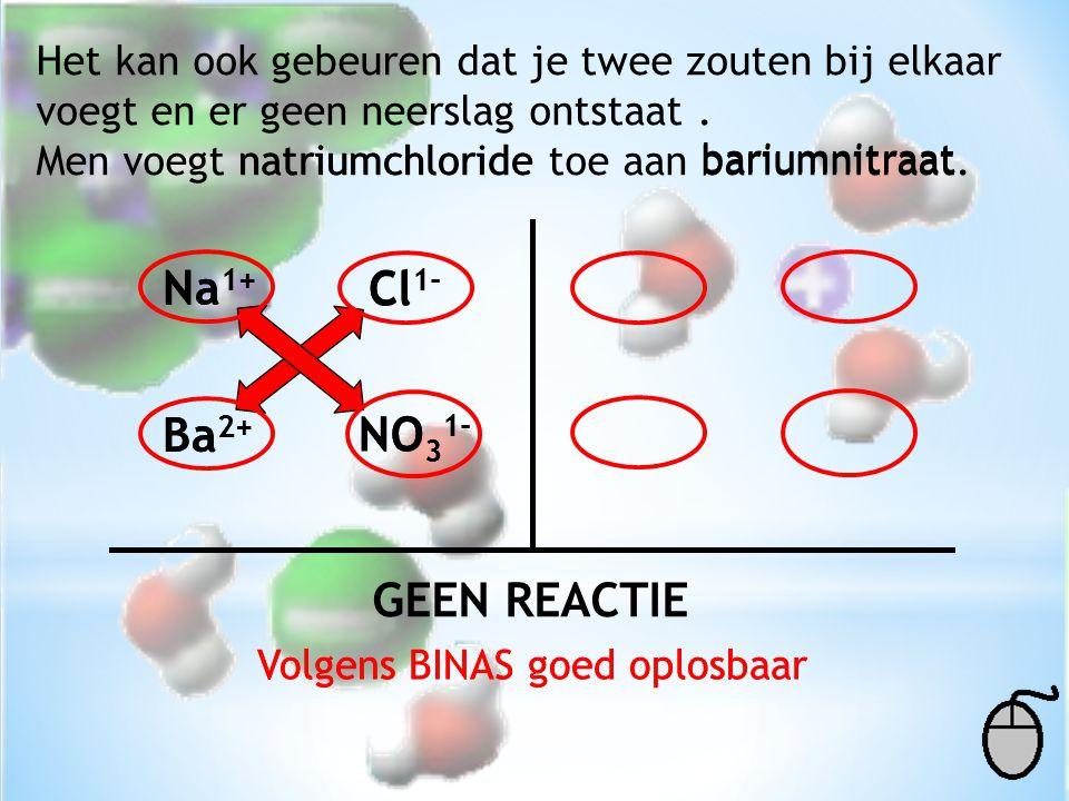 Na1+ Na1+ Cl1- Cl1- Ba2+ Ba2+ NO31- NO31- GEEN REACTIE