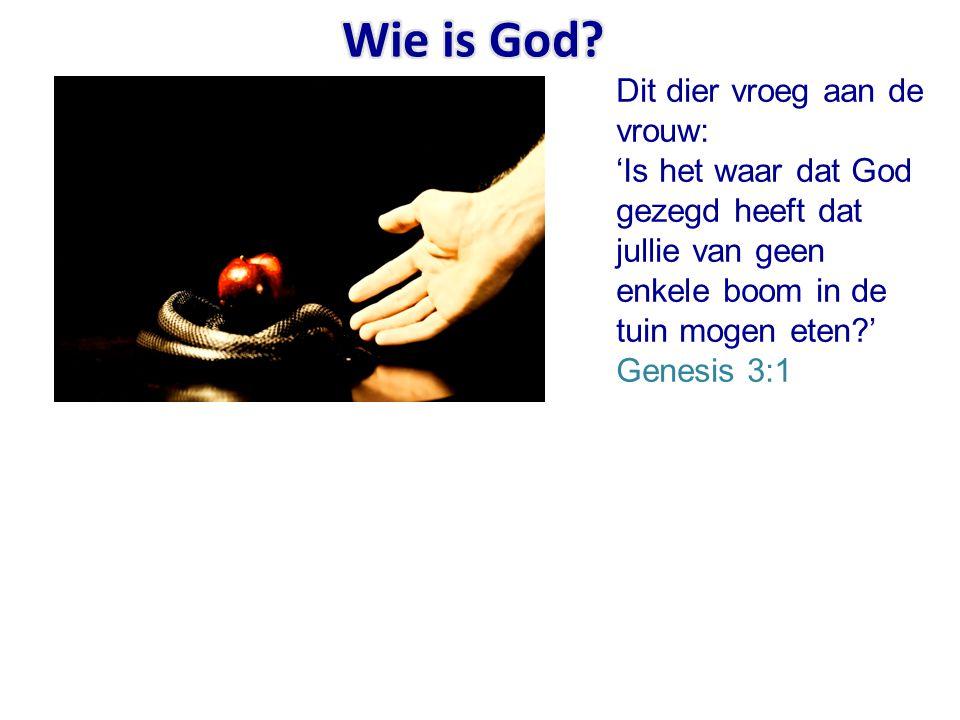Wie is God.