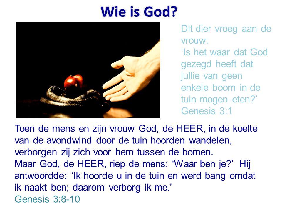 Wie is God Dit dier vroeg aan de vrouw: 'Is het waar dat God gezegd heeft dat jullie van geen enkele boom in de tuin mogen eten ' Genesis 3:1.