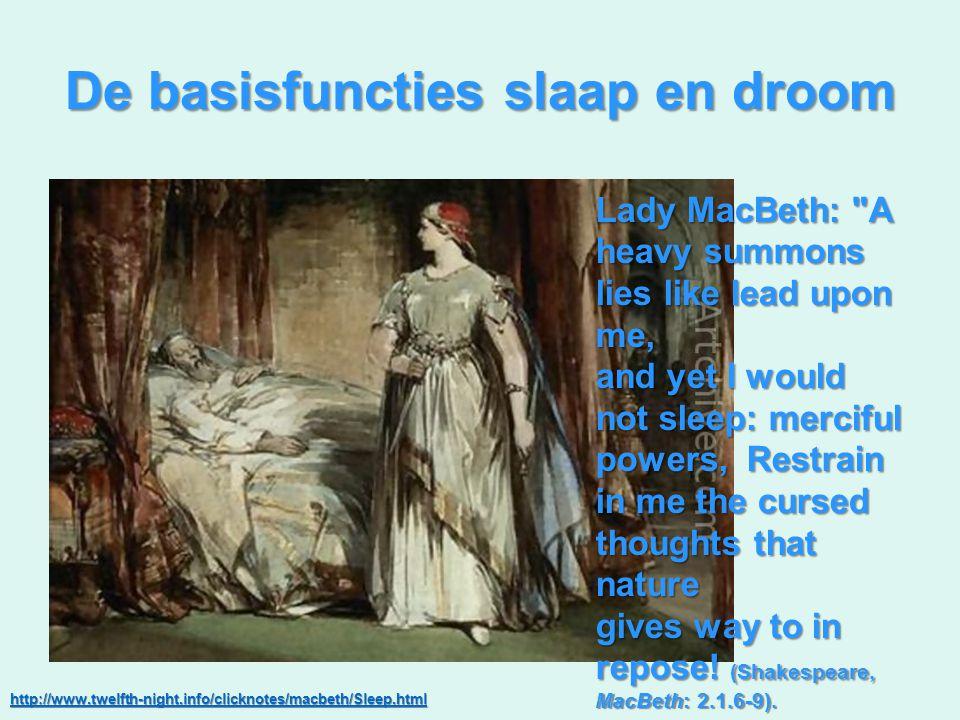 De basisfuncties slaap en droom