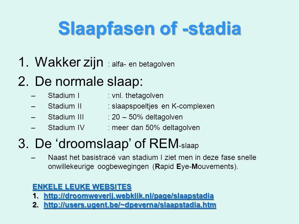 Slaapfasen of -stadia Wakker zijn : alfa- en betagolven