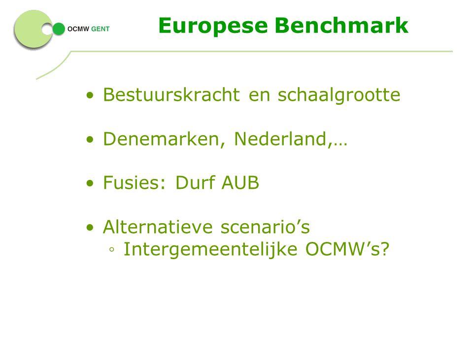 Europese Benchmark Bestuurskracht en schaalgrootte