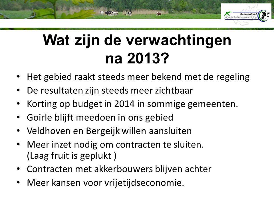 Wat zijn de verwachtingen na 2013