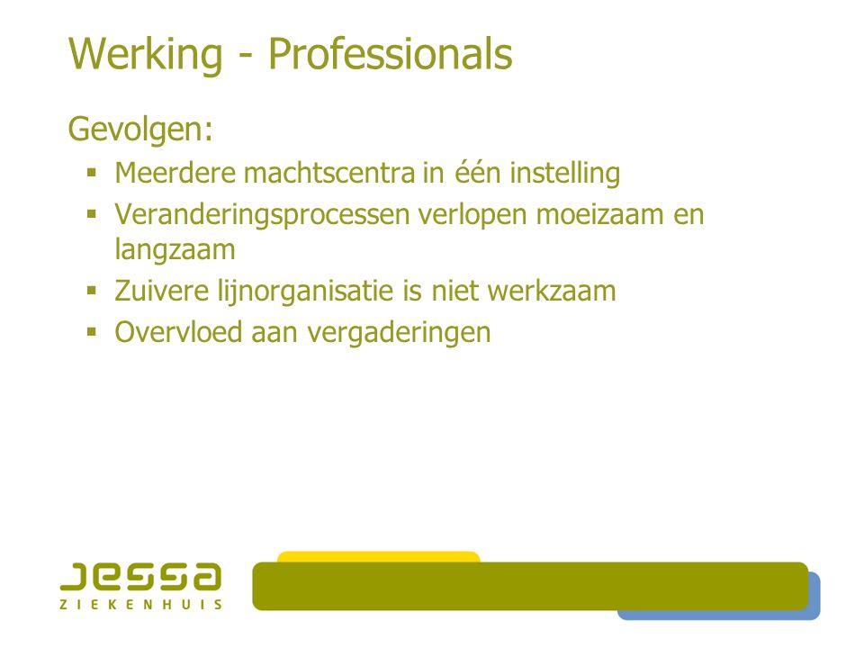 Werking - Professionals