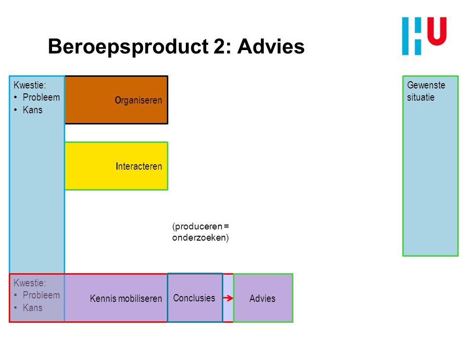 Beroepsproduct 2: Advies
