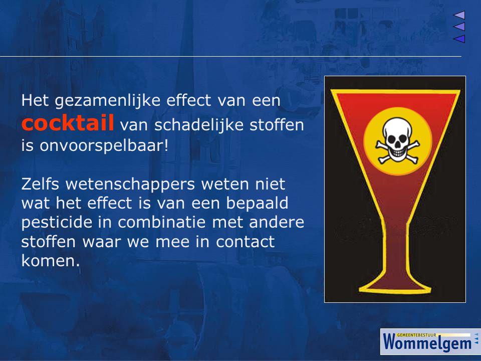 Het gezamenlijke effect van een cocktail van schadelijke stoffen is onvoorspelbaar!
