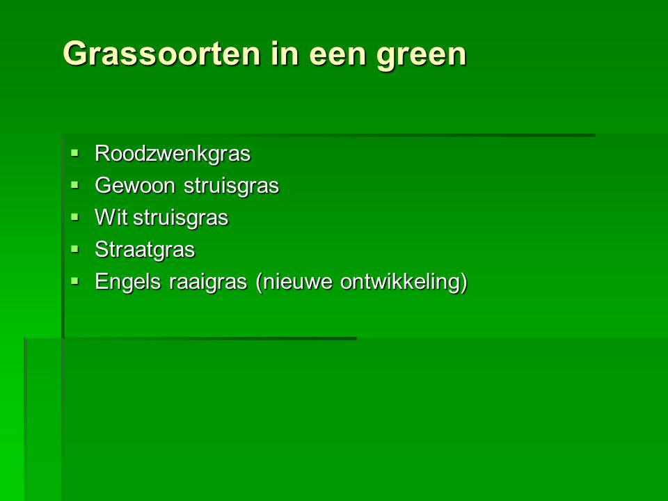Grassoorten in een green