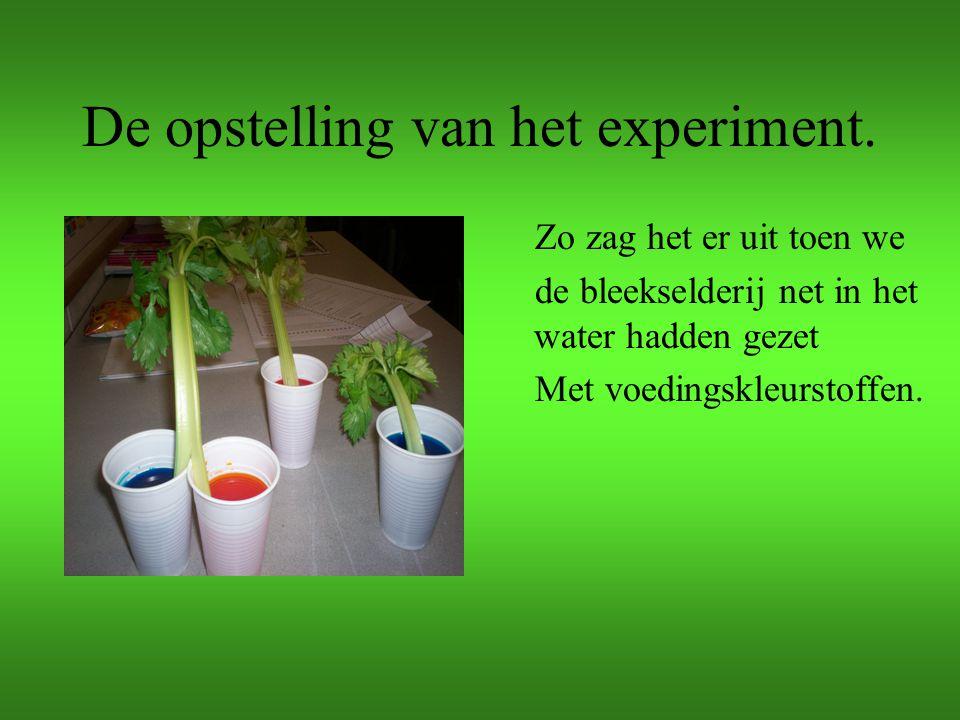 De opstelling van het experiment.