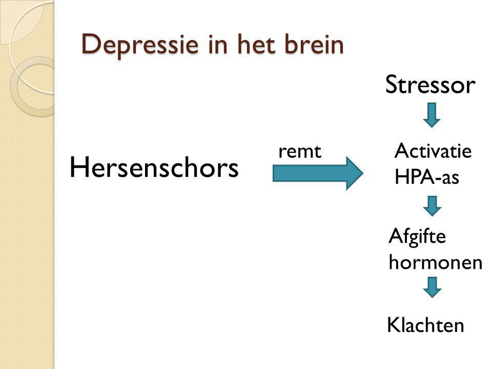 Hersenschors Depressie in het brein Stressor remt Activatie HPA-as