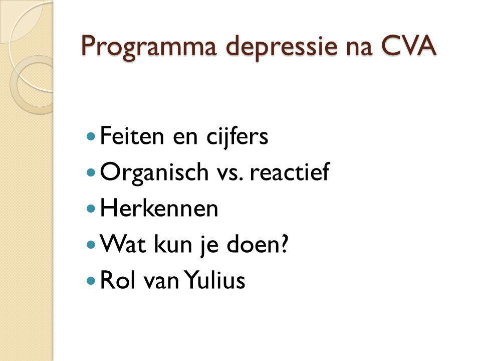 Programma depressie na CVA