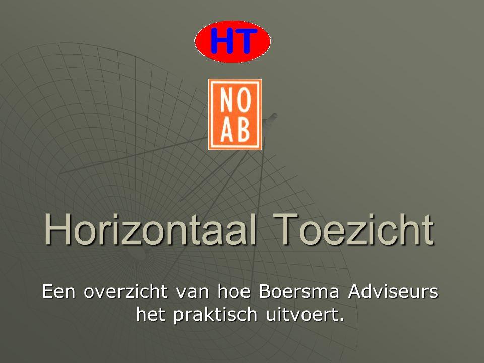Een overzicht van hoe Boersma Adviseurs het praktisch uitvoert.