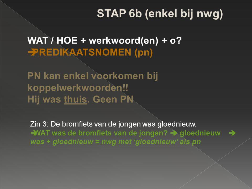 STAP 6b (enkel bij nwg) WAT / HOE + werkwoord(en) + o