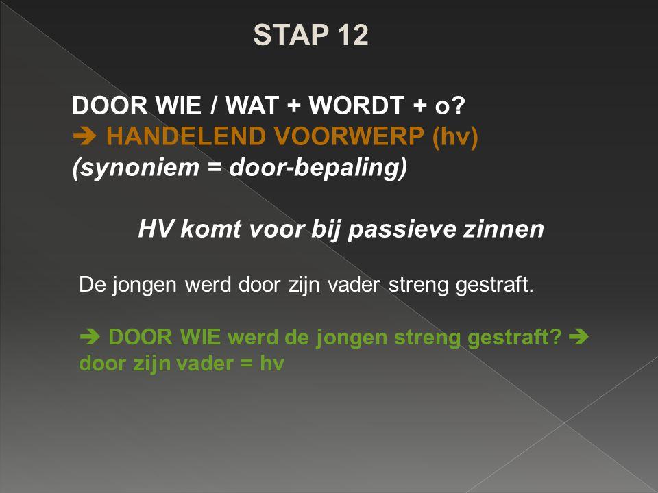 STAP 12 DOOR WIE / WAT + WORDT + o  HANDELEND VOORWERP (hv)