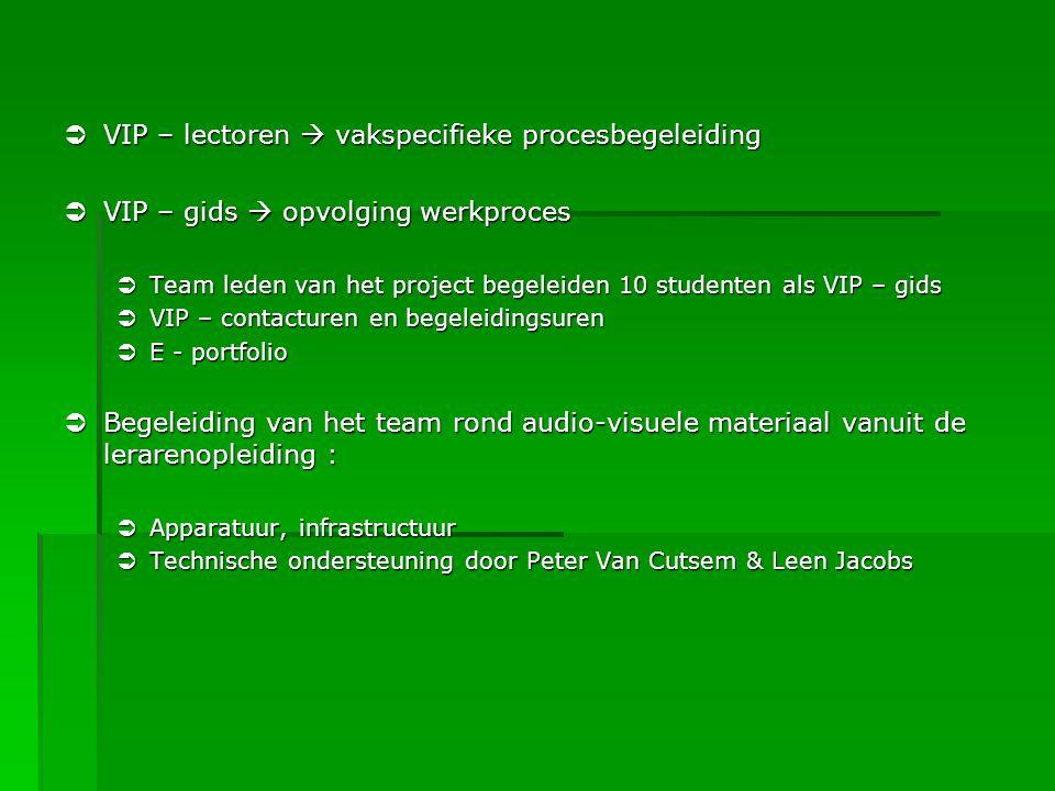VIP – lectoren  vakspecifieke procesbegeleiding