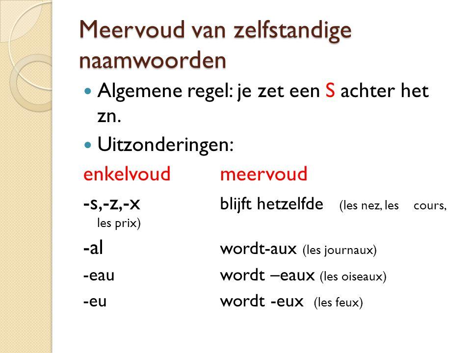 Meervoud van zelfstandige naamwoorden