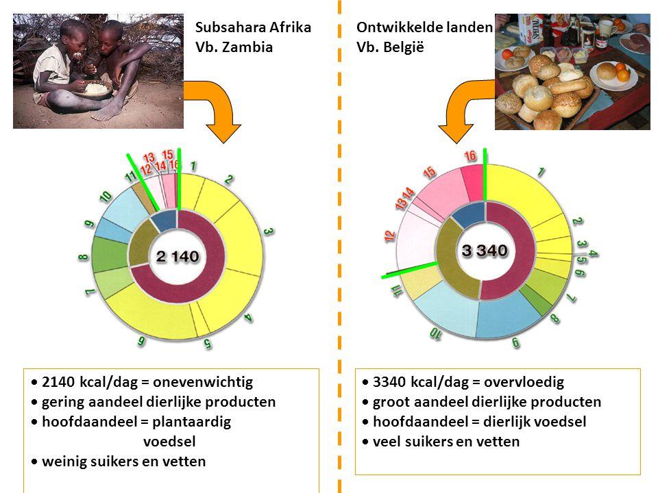 Subsahara Afrika Vb. Zambia