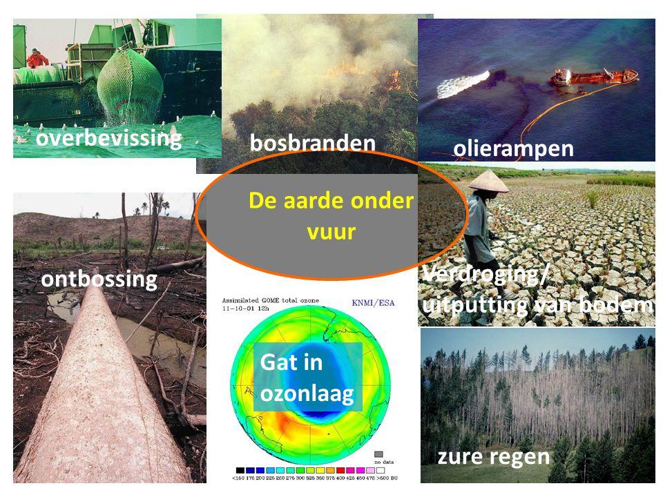 overbevissing bosbranden. olierampen. De aarde onder vuur. Verdroging/ uitputting van bodem. ontbossing.